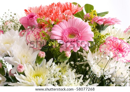 Beautiful Summer Flowers For Weddings And Home Decor Stock Photo