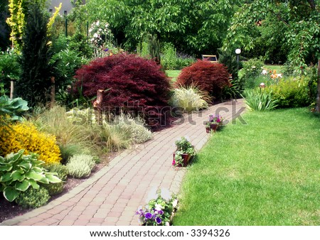 Beautiful summer garden with a lot of plant species