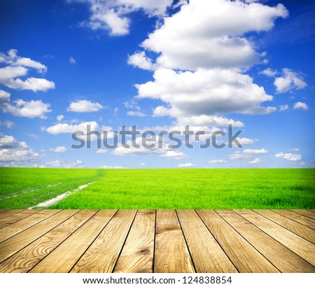 Beautiful summer green field  blue sky with grey clouds and wooden planks on floor