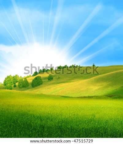 beautiful summer landscape