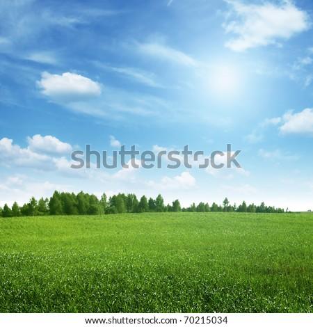 Beautiful summer landscape. - Shutterstock ID 70215034