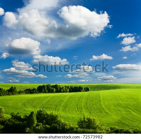 beautiful  summer landscape and cloudy sky #72573982