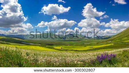 Beautiful summer landscape at Piano Grande (Great Plain) mountain plateau in the Apennine Mountains, Castelluccio di Norcia, Umbria, Italy #300302807