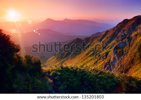 Beautiful summer landscape in the mountains with the sun at dawn #135201803