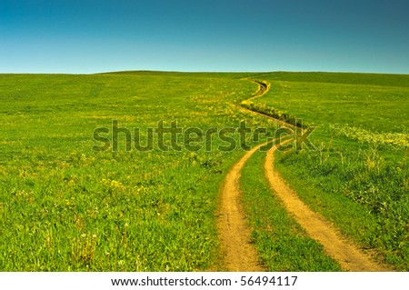 beautiful summer landscape with a field road