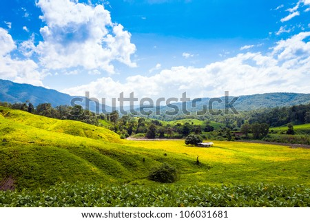 Beautiful summer landscape with clouds sky in Galyani Vadhana district,Thailand
