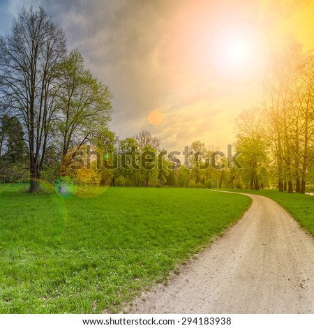 Beautiful summer landscape with field of green grass and perfect sky