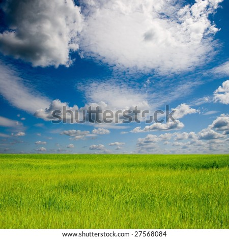 beautiful summer landscape with green grass and blue sky stock photo