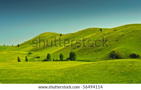 beautiful summer landscape with hills