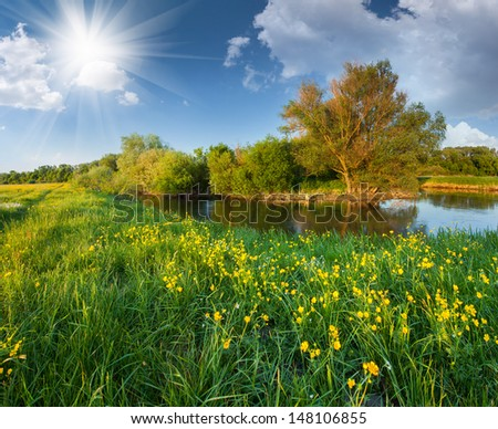 Beautiful summer landscape with the river