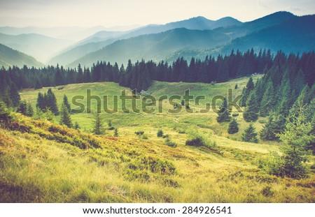 beautiful summer mountain...