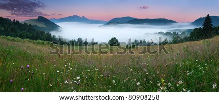Beautiful summer mountains landscape with mist and meadow flowers.