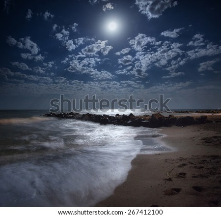 Beautiful summer night on the sea in Ukraine. Full moon