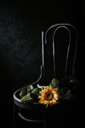 Beautiful sunflower on retro style made of wood. Beautiful still life with a flower on a dark background
