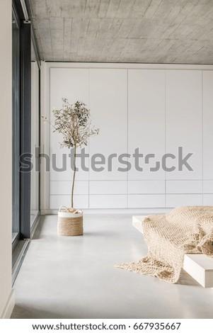 Beautiful sunlight in spacious minimalistic living room #667935667