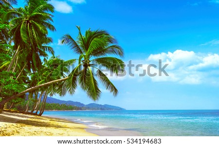 Beautiful sunny beach. View of nice tropical beach with palms around. Holiday and Vacation concept #534194683