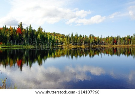Beautiful sunny day during fall in Northern Canada forest with some red and orange maple trees reflected by a calm water lake.