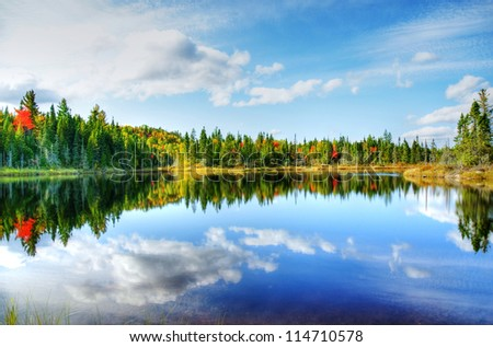 Beautiful sunny day during fall in Northern Canada forest with some red and orange maple trees reflected by a calm water lake, hdr rendering.