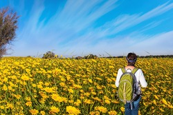 Beautiful sunny day in April. Walk among fresh green grass and wildflowers. Woman is walking in a grassy field. Blooming Negev Desert. Magnificent blooming spring in Israel.