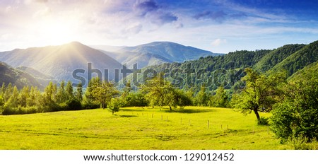Beautiful sunny day is in mountain landscape. Carpathian, Ukraine.