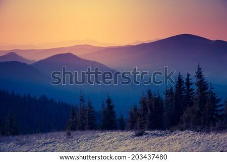 Beautiful sunny day is in mountain landscape. Carpathian, Ukraine, Europe. Beauty world. Retro filtered. Instagram toning effect. #203437480