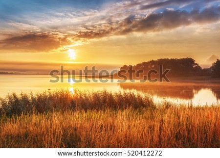 Shutterstock Beautiful sunrise landscape at Northern sea, Sweden. Epic scenery with high grass at foreground and sea, rising in morning sun and dramatic sky and clouds at background.