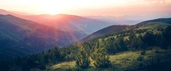 Beautiful sunrise on top of the mountain with fir trees. A new day begins. Sunbeams in the golden hour. Concept of nature, holidays, and healthy lifestyle. Panoramic landscape view.