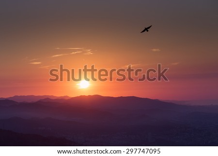 Beautiful sunrise over mountains with bird flying