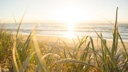 Beautiful sunrise over one of Australia's famous Gold Coast beaches.
