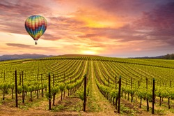 Beautiful Sunrise Sky, Mountains and Hot Air Balloon in Napa Valley Wine Country Vineyards.