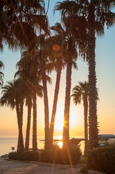 Beautiful sunrise with silhouettes of palm trees at beach, the Mediterranean sea