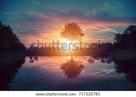Beautiful sunrise with the reflection in the water of the trees. Photo taken in Orlando Florida near a lake.