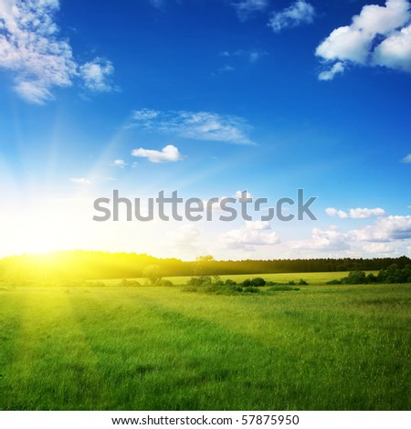 Beautiful sunset and green field.
