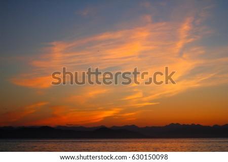 Beautiful sunset and sea gulls #630150098