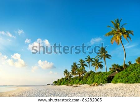beautiful sunset at tropical beach. island of maldives
