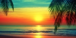 Beautiful sunset beach landscape, exotic tropical island nature, blue sea water, ocean waves, colorful red yellow sky, palm tree leaves silhouette, golden sun glow reflection, summer holidays vacation