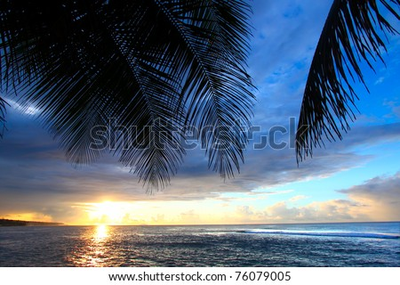 Beautiful sunset framed by palm fronds on the west coast of Puerto Rico