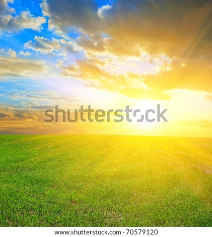 beautiful sunset in a green fields