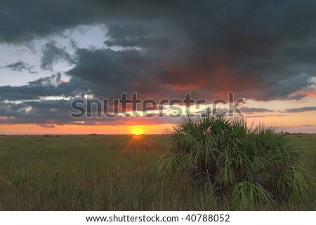 Beautiful sunset in a remote part of the Florida Everglades