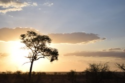 Beautiful Sunset in Kruger National Park