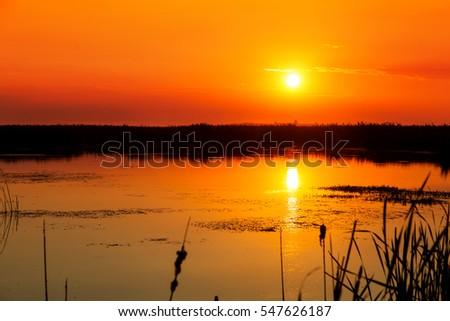 Beautiful sunset in Natural Park Comana in Giurgiu, Romania. Comana became protected area since 30 noiembrie 2004. Imagine de stoc ©