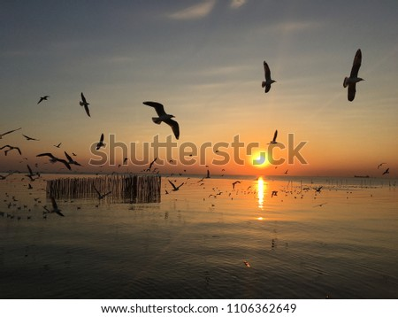 Beautiful sunset in Samut prakan ,Thailand #1106362649