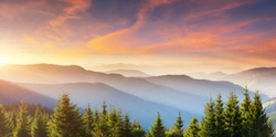 Beautiful sunset in the summer mountains. Location place of Carpathian mountains, Ukraine, Europe. Incredible natural wallpaper. Evening light illuminates the valley. Discover the beauty of earth.