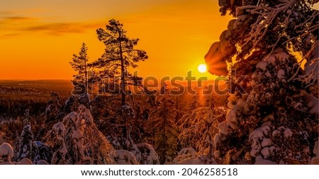 Beautiful sunset in the winter snow forest. Winter snowy forest at sunset. Winter sunset in snowy forest. Winter snow forest at sunset