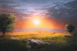 Beautiful Sunset Landscape. Nature composition.