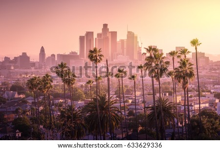 Photo of  Beautiful sunset of Los Angeles downtown skyline and palm trees in foreground
