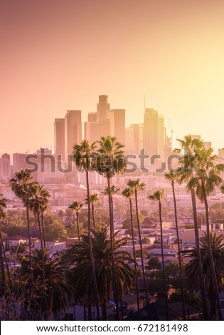 Beautiful sunset of Los Angeles downtown skyline and palm trees in foreground #672181498
