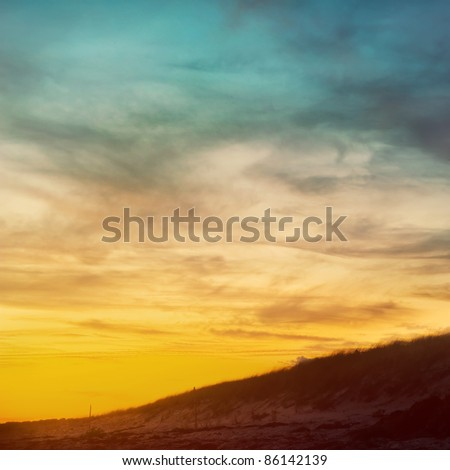 Beautiful sunset on the beach with sand and sea grass.