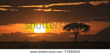Beautiful sunset on the savanna plains of East Africa - stock photo