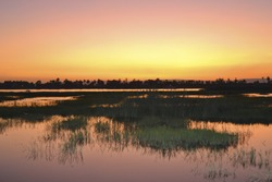 Beautiful sunset over a river and marsh land